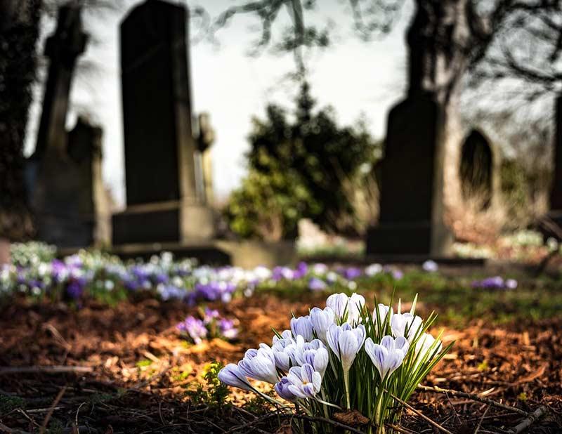 Erstmals Transportstühle auf einem Friedhof